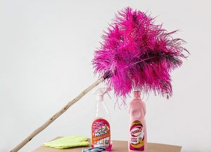feather-duster-709124_960_720[1]