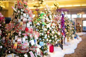 christmas-trees-1823938_640