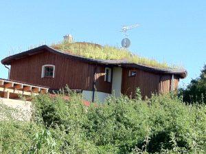 zelena-strecha